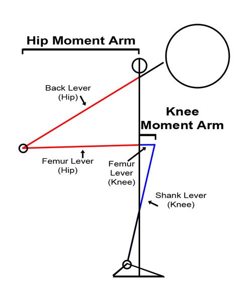 Lever Arm Diagram : Levers