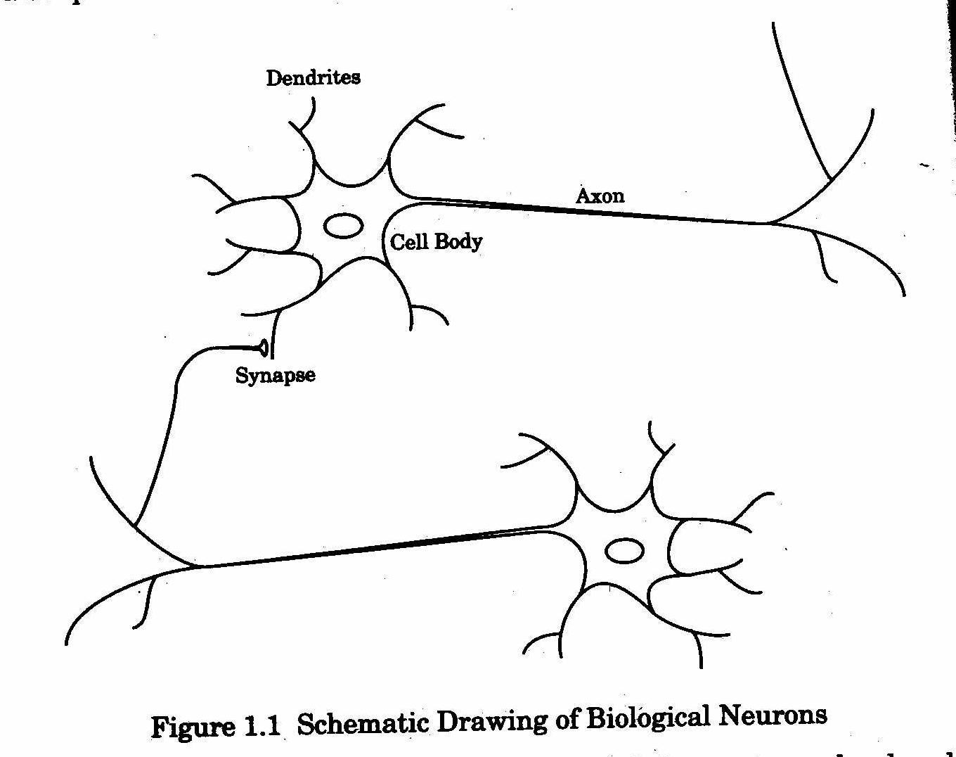 Easy diagram of a neuron block and schematic diagrams easy diagram of a neuron images gallery ccuart Image collections