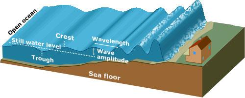 Tsunami Forming