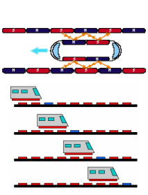 How Do Maglev Trains Work >> Physics Of Maglve Train Physics Of Maglev Train