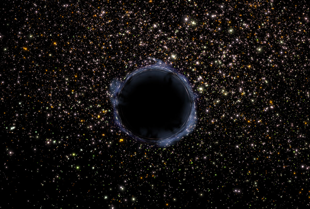The Black Hole 2006 film  Wikipedia
