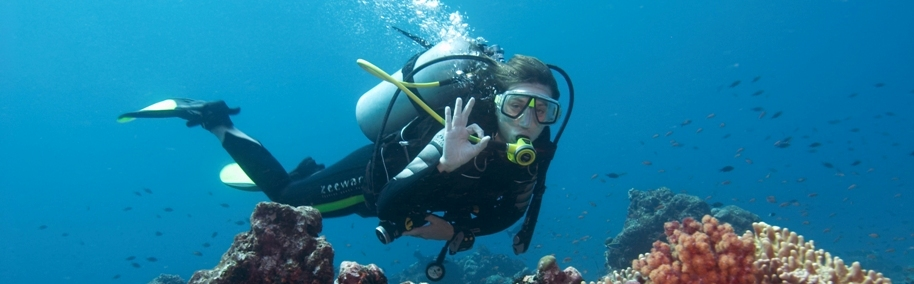 physics of scuba diving A few years ago, one of our professors, dr jordan gerton, made this video while on vacation, about the physics of scuba this video is for non-commercial us.