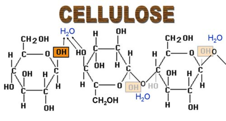 heat of formation of glucose